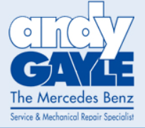 andy gayle logo